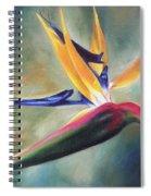 Dj's Flower Spiral Notebook
