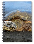 Do Not Disturb Spiral Notebook