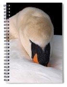 Do Not Disturb - Swan On Nest Spiral Notebook