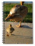 Do What I Do 27709 Spiral Notebook