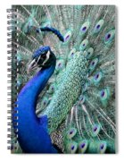 Do You Like Me Now Spiral Notebook