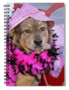 Do You Like My Pink Hat Spiral Notebook