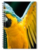 Do Your Exercise Daily Blue And Yellow Macaw Spiral Notebook