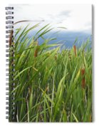 Dobie Swamp Tails Spiral Notebook