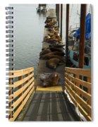 Dock Sea Lions Astoria Or 1 A Spiral Notebook