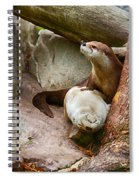 Doctor Otter At The Western North Carolina Nature Center Spiral Notebook