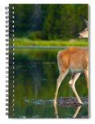 Doe Spiral Notebook