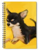 Dog Chihuahua Yellow Splash Spiral Notebook