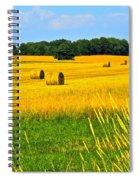Dog Days Of Summer Spiral Notebook
