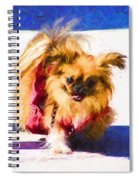 Dog Daze 3 Spiral Notebook
