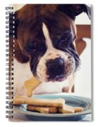 Dog Eating Biscuits At Table Spiral Notebook