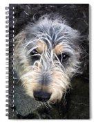 Dog Head Spiral Notebook