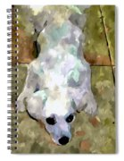 Dog Lying On Floor  Spiral Notebook