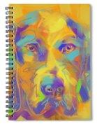 Dog Noor Spiral Notebook