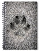 Dog Paw Print In Sand Spiral Notebook