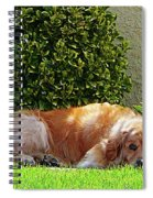 Dog Relaxing Spiral Notebook