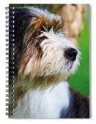Dog Sitting Next To A Tree Spiral Notebook