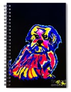 Dog Tibetin Lhasa Apsos  Spiral Notebook