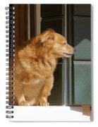 Doggie In The Window Spiral Notebook