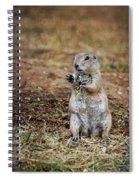 Doggie Snack Spiral Notebook