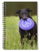Dogs For Peace Too Spiral Notebook