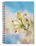 Dogwood Against Blue Sky Spiral Notebook