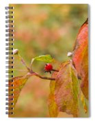 Dogwood Berrie Spiral Notebook