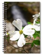 Dogwood Blooms Spiral Notebook