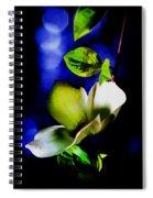 Dogwood Dream Spiral Notebook