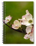 Dogwood Flowers Spiral Notebook