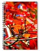 Dogwood In Autumn Spiral Notebook