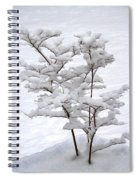 Dogwood In Snow Spiral Notebook