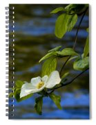 Dogwood On The Merced Spiral Notebook