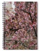 Dogwood Starting To Bloom Spiral Notebook