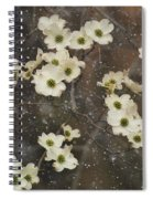 Dogwood Winter Spiral Notebook