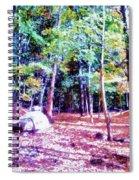 Dolmen Pass Spiral Notebook