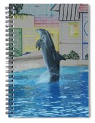 Dolphin Walking On Water Digital Art Spiral Notebook