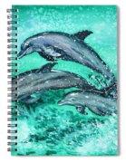 Dolphins  Spiral Notebook