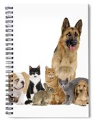Domestic Mammal Pets Spiral Notebook