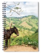 Donkey And Hills Spiral Notebook