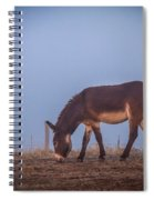 Donkey In The Fog Spiral Notebook