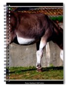 Donkey With Oil Painting Effect Spiral Notebook