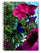 Donna's Blooming Petunias Spiral Notebook