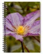 Donna's Purple Flower Spiral Notebook