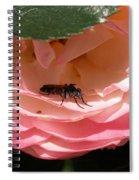 Don't Bug Me Spiral Notebook
