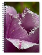Dont Call Me A Monster Just Because I Have Teeth Purple Tulip Spiral Notebook