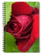 Don't Cry For Me Rosanna Spiral Notebook