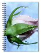 Don't Look Back Spiral Notebook