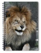 Don't Mess With Me Spiral Notebook