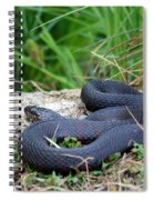 Dont Tread On Me Spiral Notebook